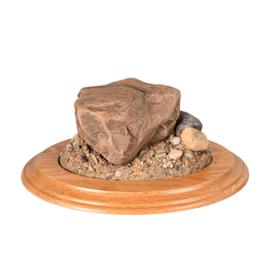 Rock Base - Small Oval - Matuska Taxidermy