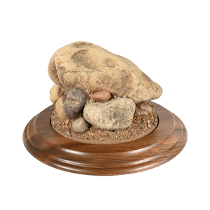 Rock Base - Small Round - Matuska Taxidermy