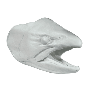 Fish Reproduction Heads - Matuska Taxidermy