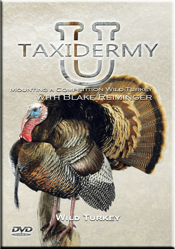 Mounting a Competition Turkey w/ Blake Reiminger by Taxidermy University - Matuska Taxidermy