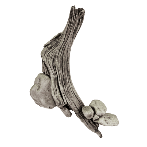 Driftwood Wall Scenery with Rocks - Matuska Taxidermy