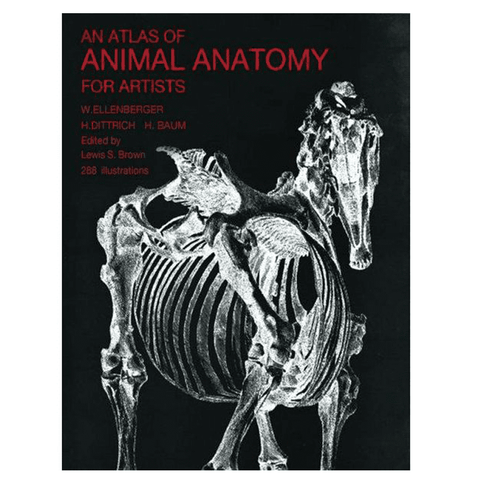 Atlas of Animal Anatomy - Matuska Taxidermy