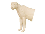 Mountain Lion • Life-Size - Matuska Taxidermy