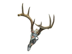 Wolf Craft Hydrocoated Reproduction Skulls - Matuska Taxidermy