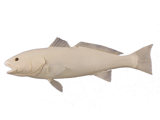 Red Fish - Matuska Taxidermy