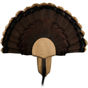 Turkey Display Kit - Matuska Taxidermy