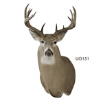 Competitors' Choice Upright Offset - Matuska Taxidermy