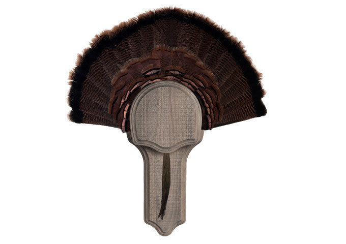 Rustic Turkey Display Kit - Matuska Taxidermy