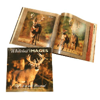 Whitetail Images Up Close and Personal - Matuska Taxidermy