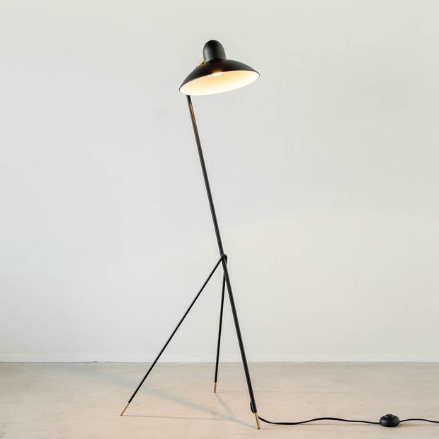 Black - brass Modern Floor Lamp
