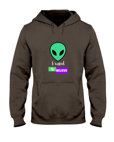 Image of I Want to Believe Hoodie