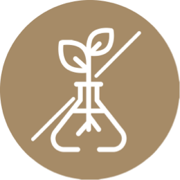 Icon of a plant sprout growing in a test tube with a line crossing the image out
