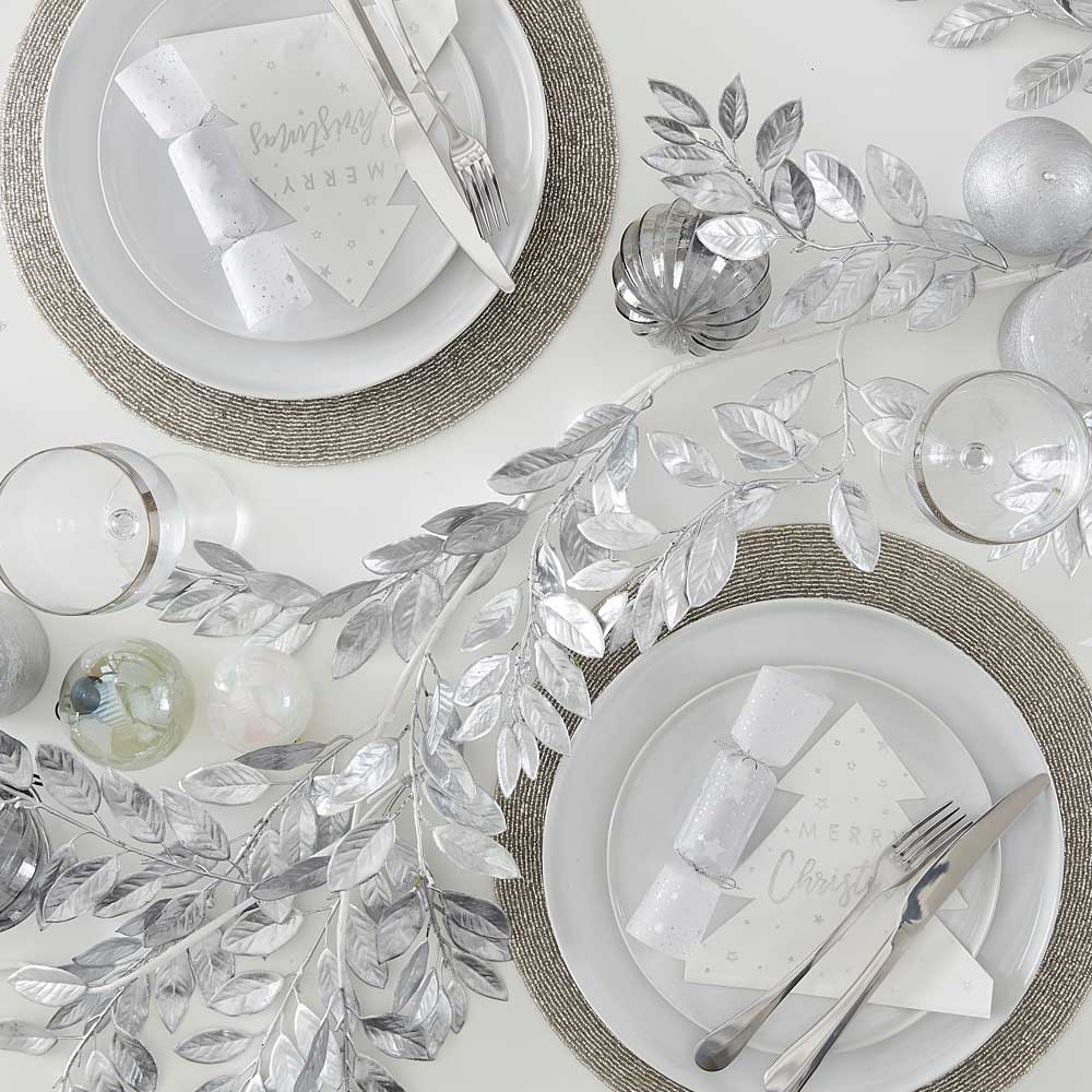 Silver & Snow Collection