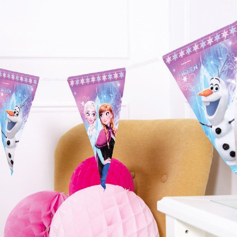 A Disney's Frozen party bunting featuring images of the film characters