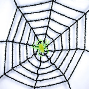 Spider Web Decoration and Glow in the Dark Spider