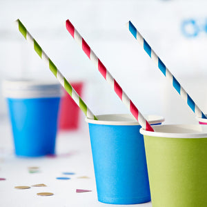 Green Stripe Paper Straws (x10)