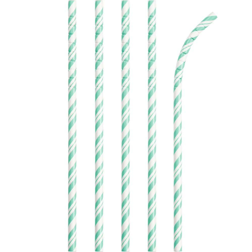 Striped Eco-Flex Paper Straws Mint (x24)