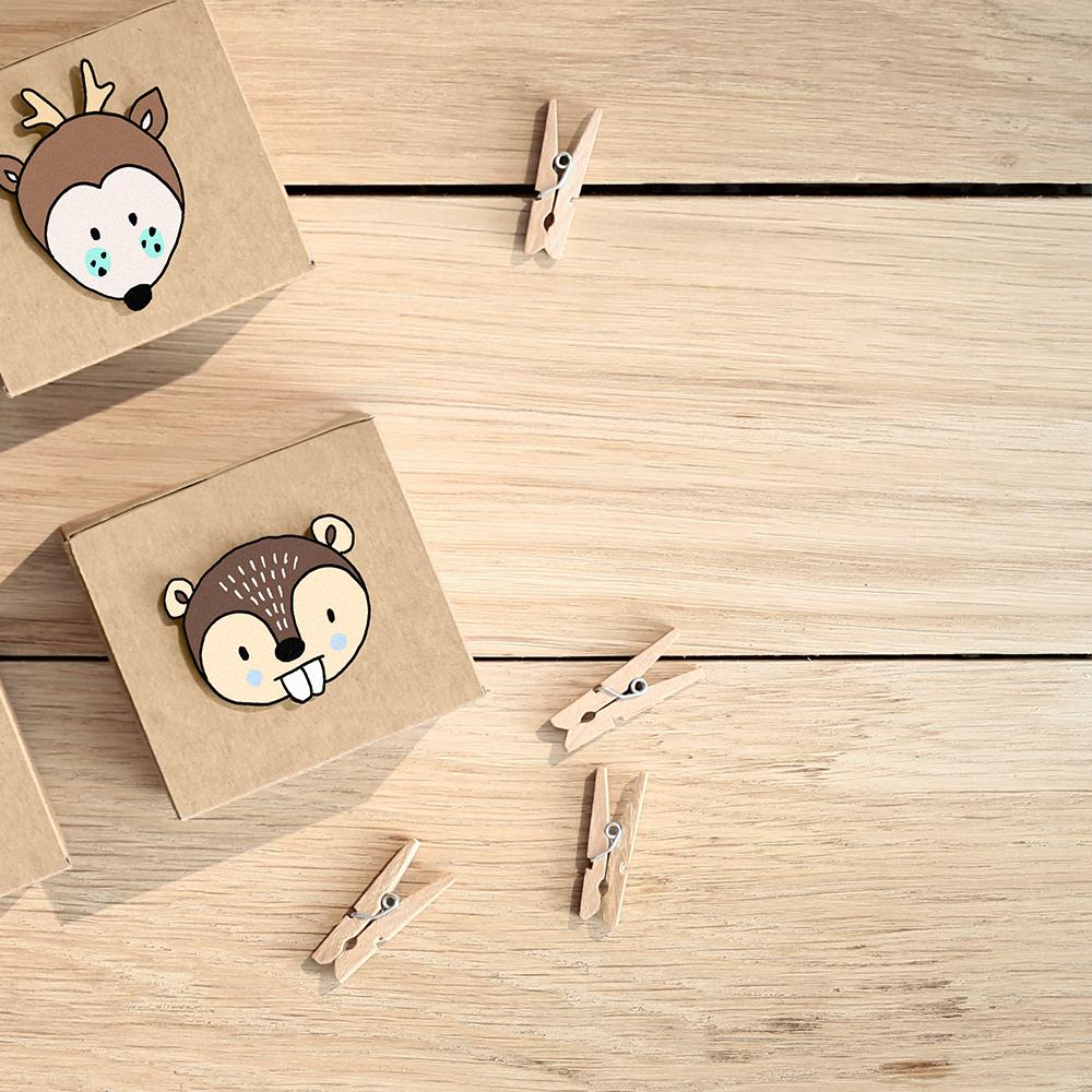 Natural Mini Wooden Pegs