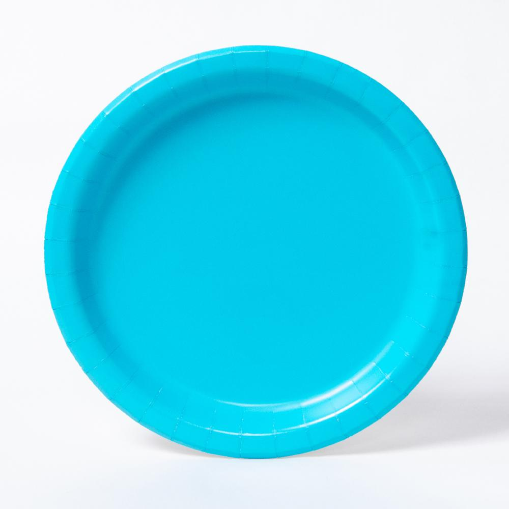 10 X light blue   reusable plastic plate 23cm  for party and all occasions
