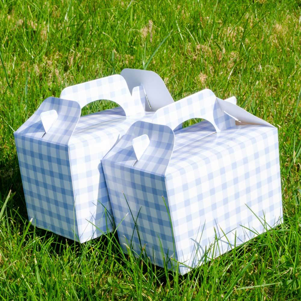 Blue Gingham Party Boxes (x4)