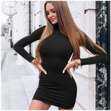 Autumn Sexy Solid Color Turtleneck Skinny Mini Dress 2020 Women Fall Keep Warm Long Sleeve Slim Dress 2020