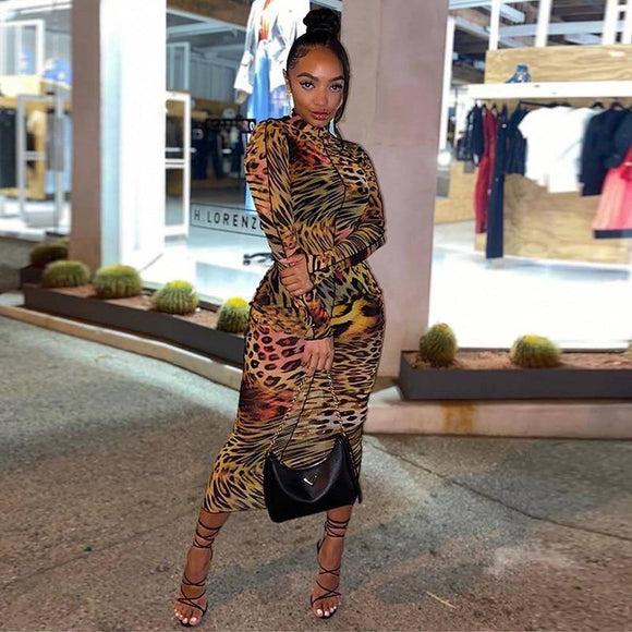 Hucgitar Leopard Print Long Sleeve Bodycon Sexy Maxi Dress 2021 Autumn Winter Women Party Elegant Outfits