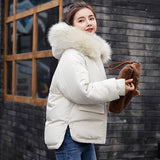 Winter Jacket 2020 Women Thick Snow Wear Coat 2020 Lady Clothing Female Jacket 2020 Parkas 2020 Fake Fur Collar Parka Down Cotton Jacket 2020 Women's Trench Coat 2020