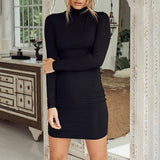 New Women Dress 2020 Turtle Neck Autumn Winter Sexy Casual Bodycon Dress 2020 Fashion Elegent Black Dress 2020 Vestidos Long Sleeve Dress 2020