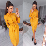 Office Lady Casual Sashes Straight Dress 2020 Long Sleeve Turn-Down Collar Dress 2020 Solid Elegant New Fashion Vintage Midi Dress