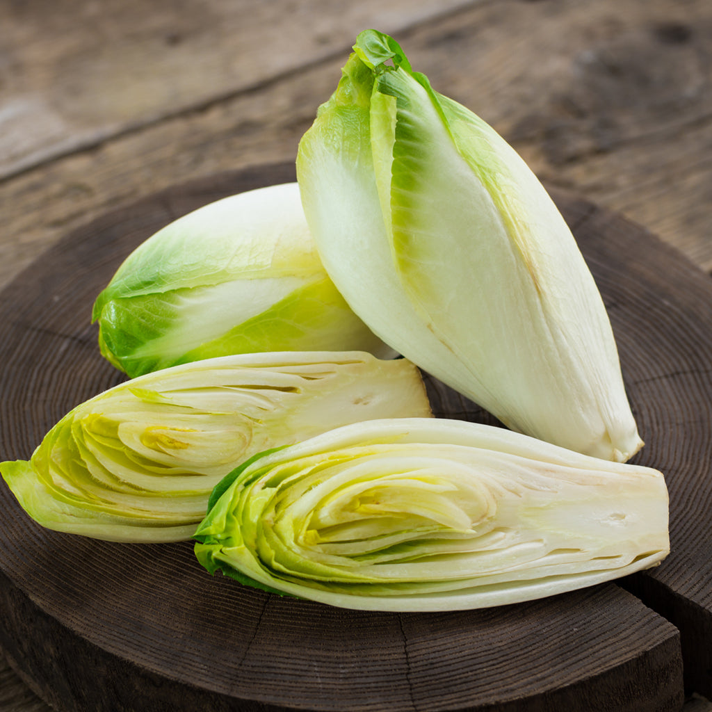 BELGIUM ENDIVE  (by the pound)