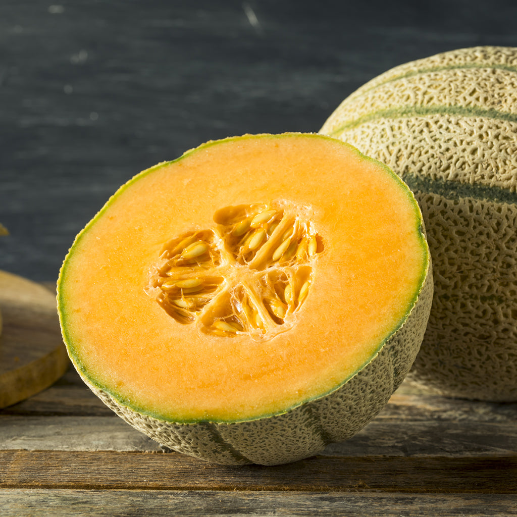 CANTALOUPE - Large (by the each)