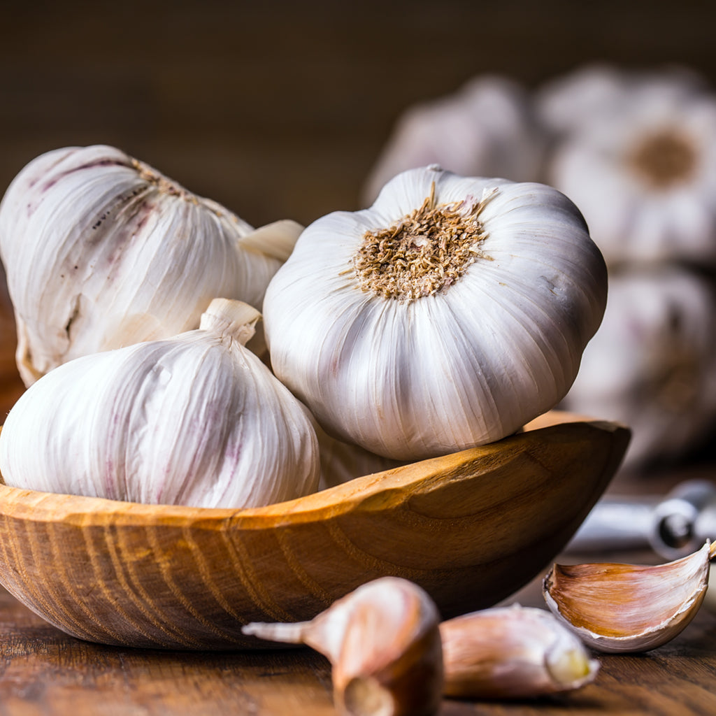 GARLIC JUMBO  (by the pound)