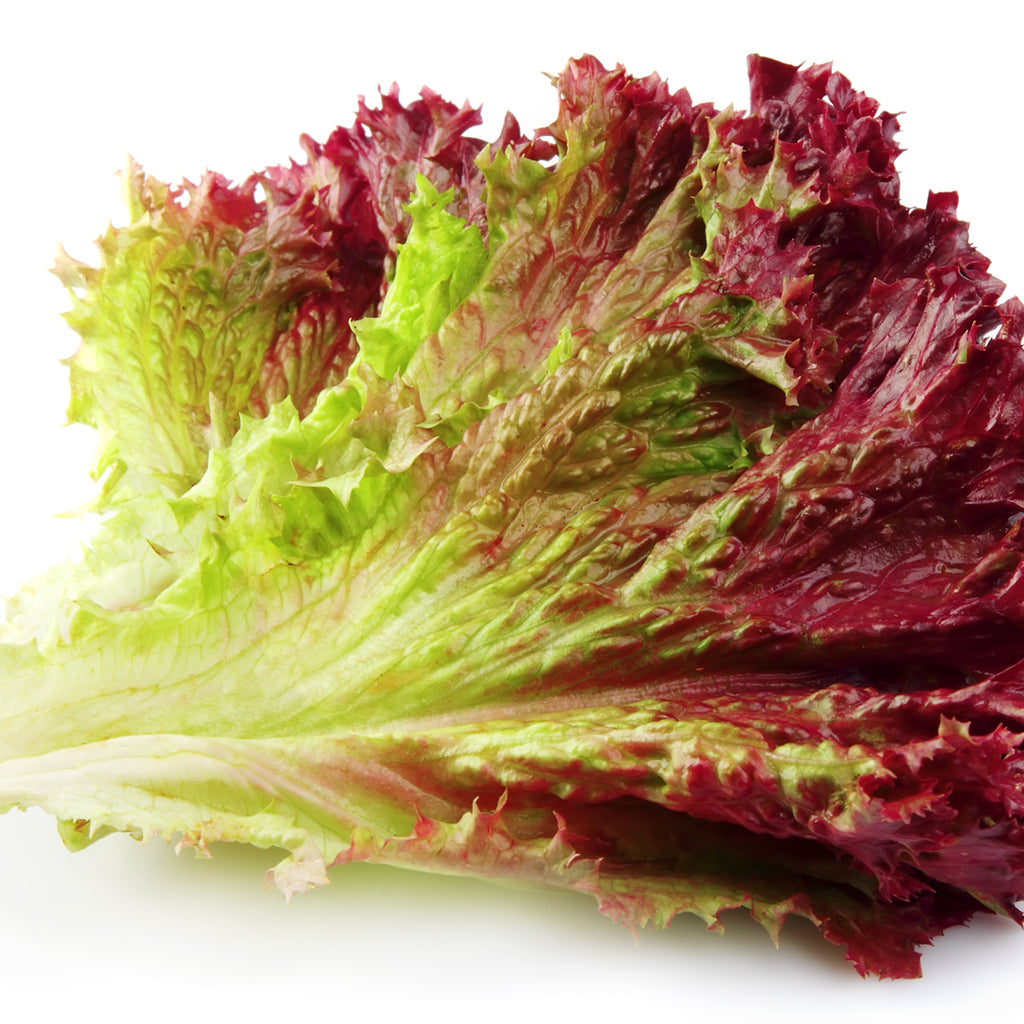 LETTUCE, RED LEAF (by the each)