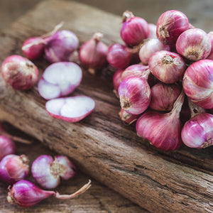 SHALLOTS (by the pound)
