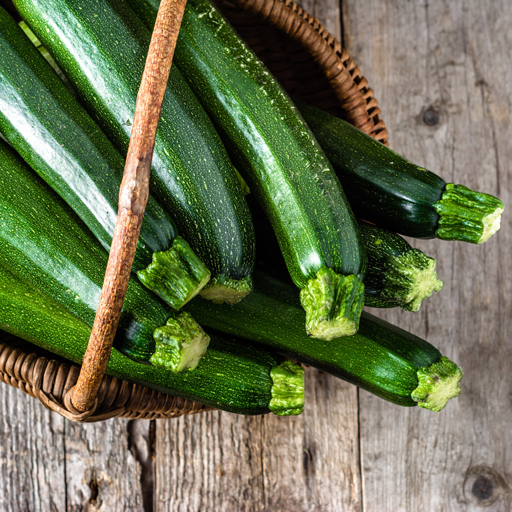 ZUCCHINI, FANCY (by the pound)