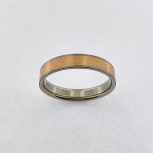 Titanium & 18ct Gold Ring