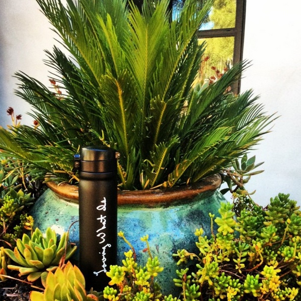 Loving What Is Black Matte Thermos