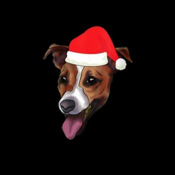 Jack Russell Terrier With Santa Claus Hat JRT Dog