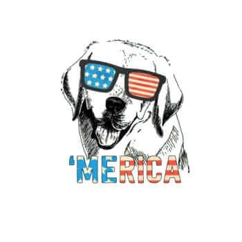 4th July Shirt Merica Labrador USA Flag Tee