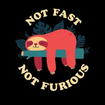 Funny Sloth Not Fast Not Furious