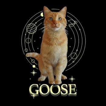 SunFrog-Busted Adames Goose Funny Cat