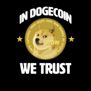 SunFrog-Busted BustedTees In Dogecoin We Trust