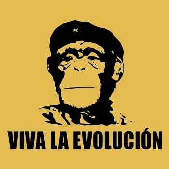 SunFrog-Busted BustedTees Viva La Evolucion