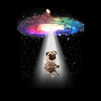 SunFrog-Busted Moore Space Pug Galaxy Funny Pug
