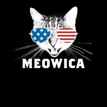 SunFrog-Busted Tingsy Meowica USA American Flag Cat