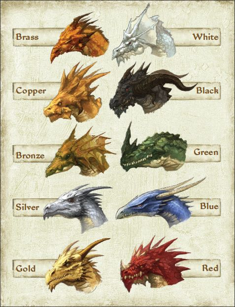 color-of-dragons