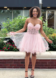 Pink Spaghetti Straps Sweetheart A Line Organza Pleated Lace Sexy Homecoming Dresses