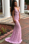 2020 Sexy Pink Mermaid/Trumpet Lace Prom Dresses