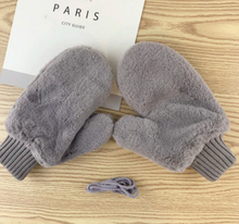 Load image into Gallery viewer, Winter Plush Mittens
