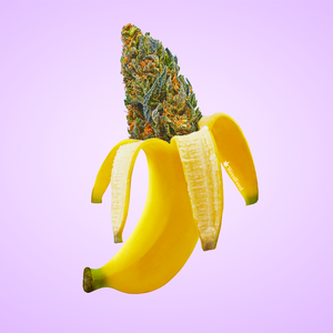banana weed artwork